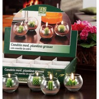 AdTrend Plant Candle with Vase